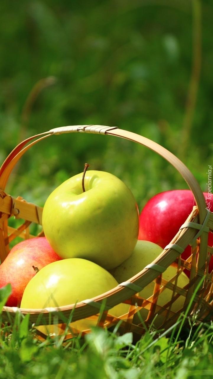 Jabłka w koszyku na trawie