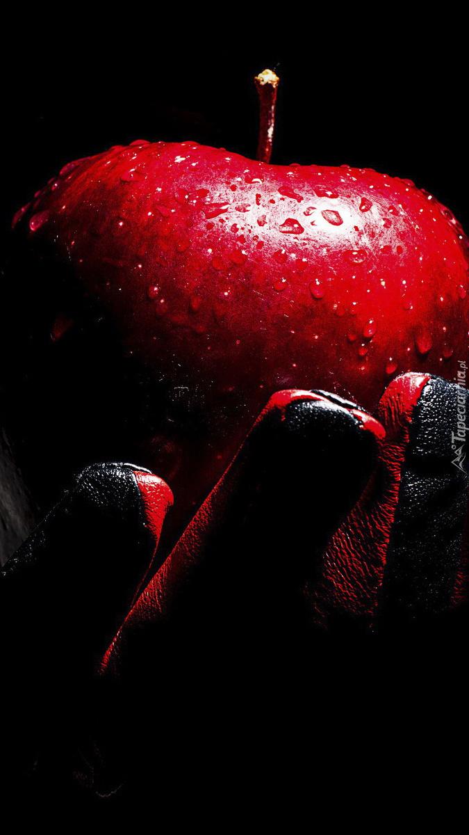 Jabłko w dłoni