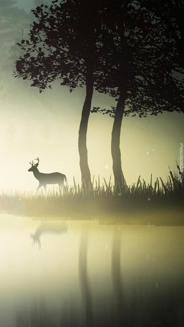Jeleń we mgle