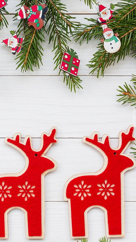 Jelonki świąteczne