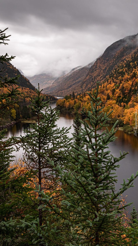 Jesień na rzeką Malbaie River