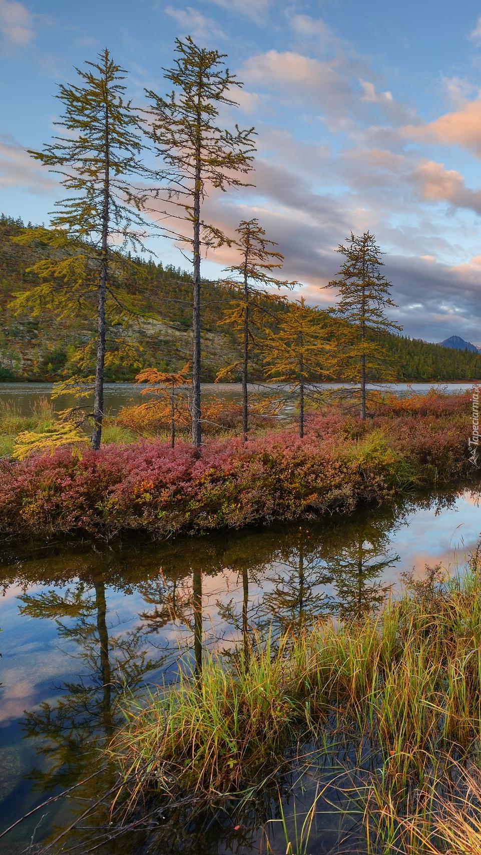 Jesień nad jeziorem
