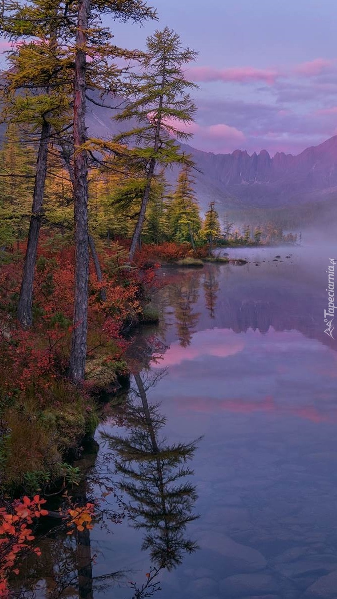 Jesień nad jeziorem Jack London