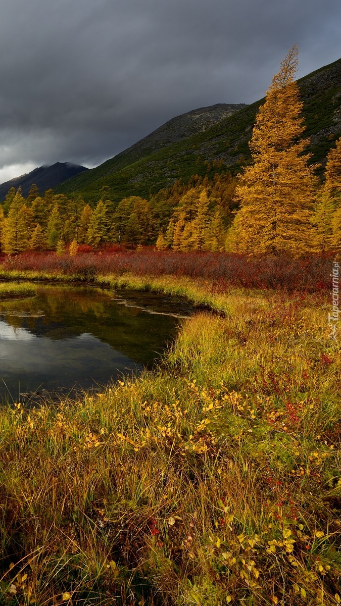 Jesień nad potokiem Nieznanym