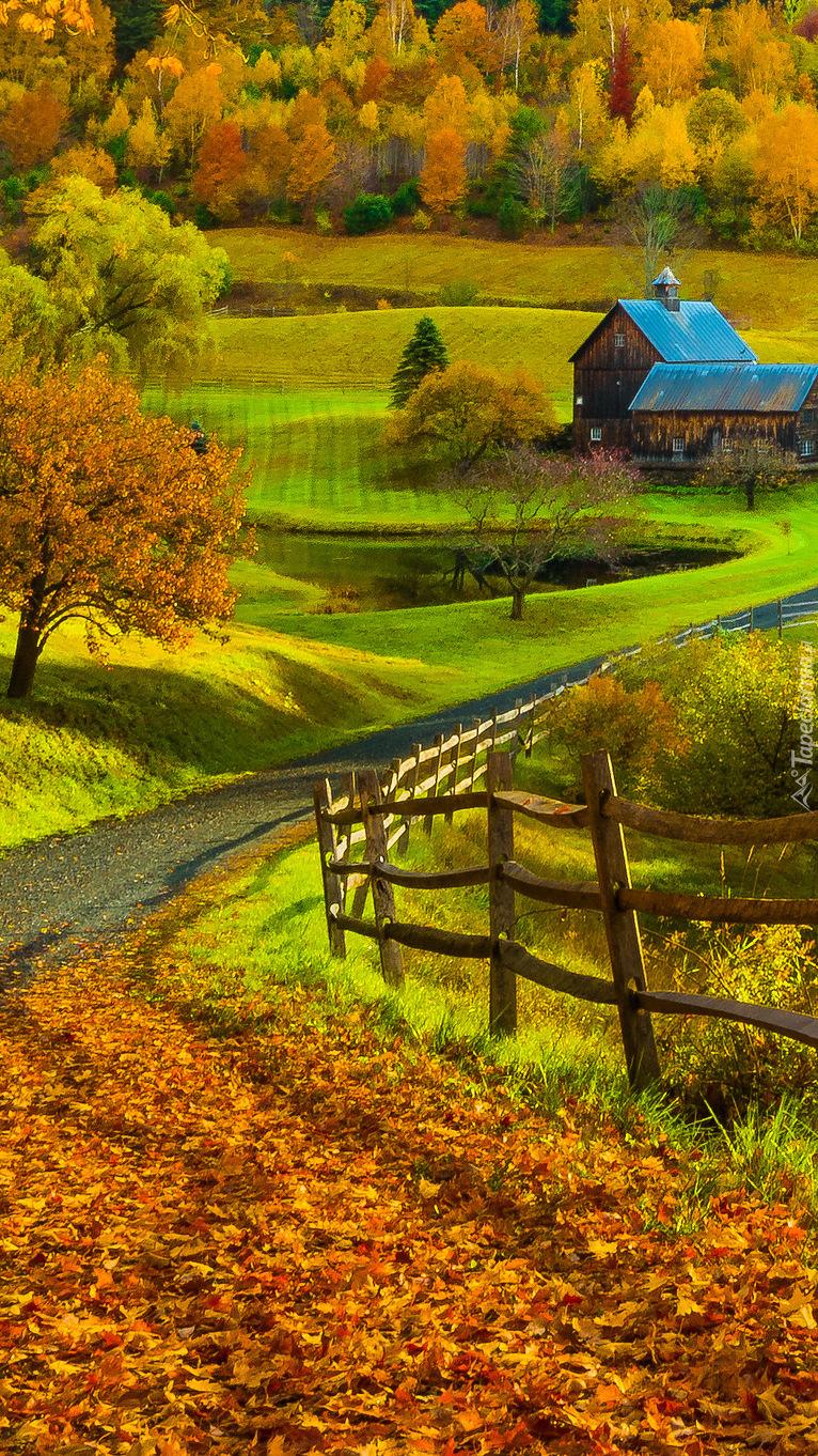 Jesień w gminie Pomfret