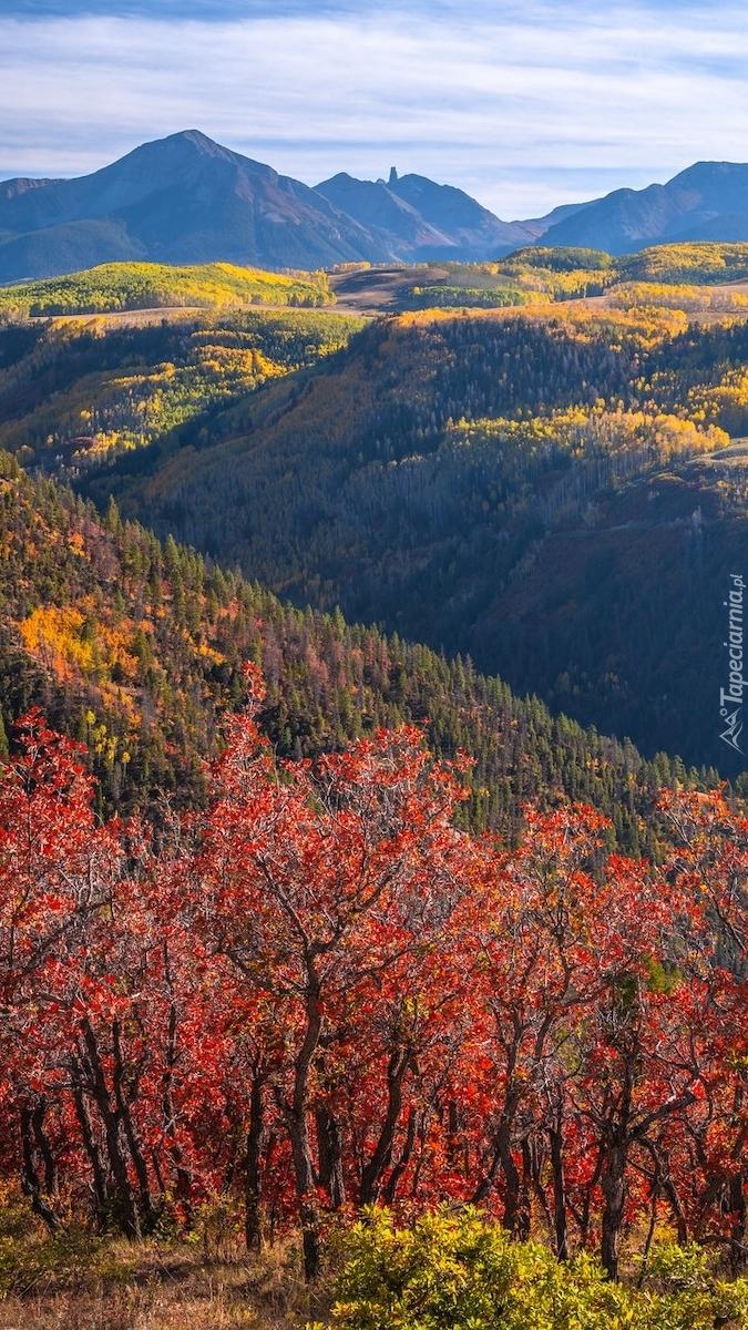 Jesień w górach San Juan Mountains