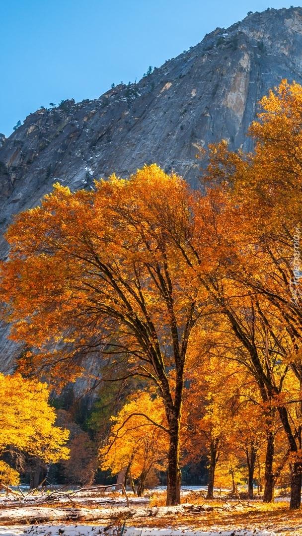 Jesień w Parku Narodowym Yosemite
