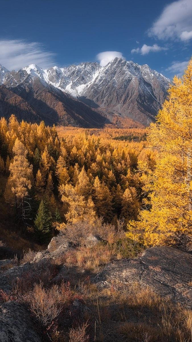 Jesień w Republice Ałtaju w Rosji