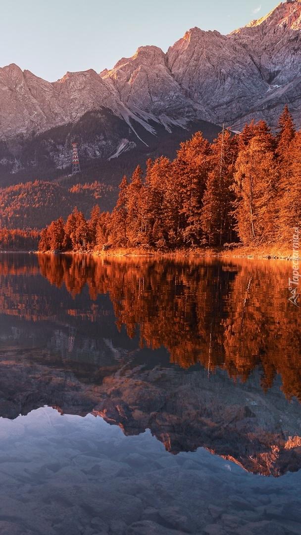Jesienne drzewa nad górskim jeziorem