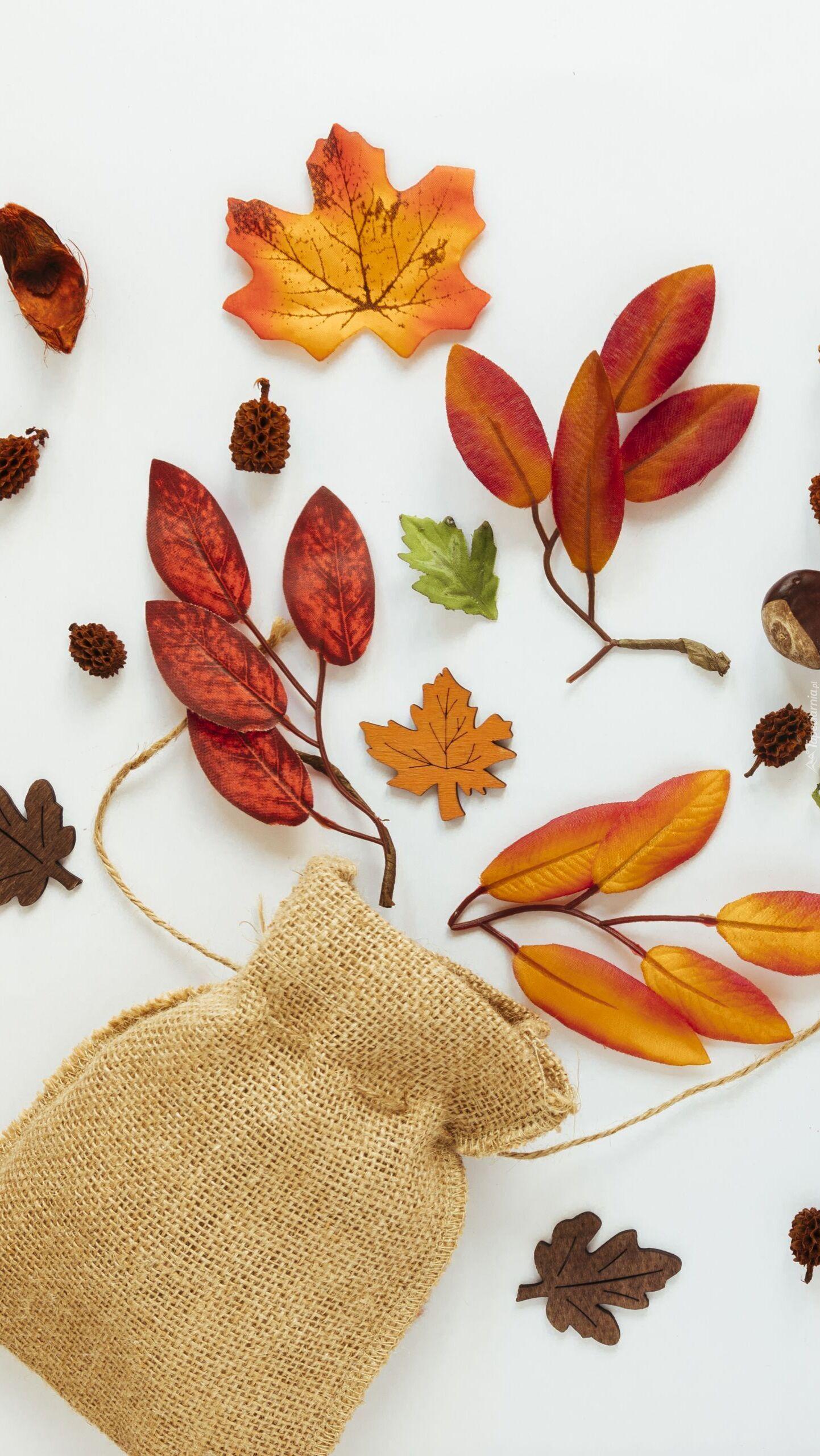 Jesienne liście obok woreczka