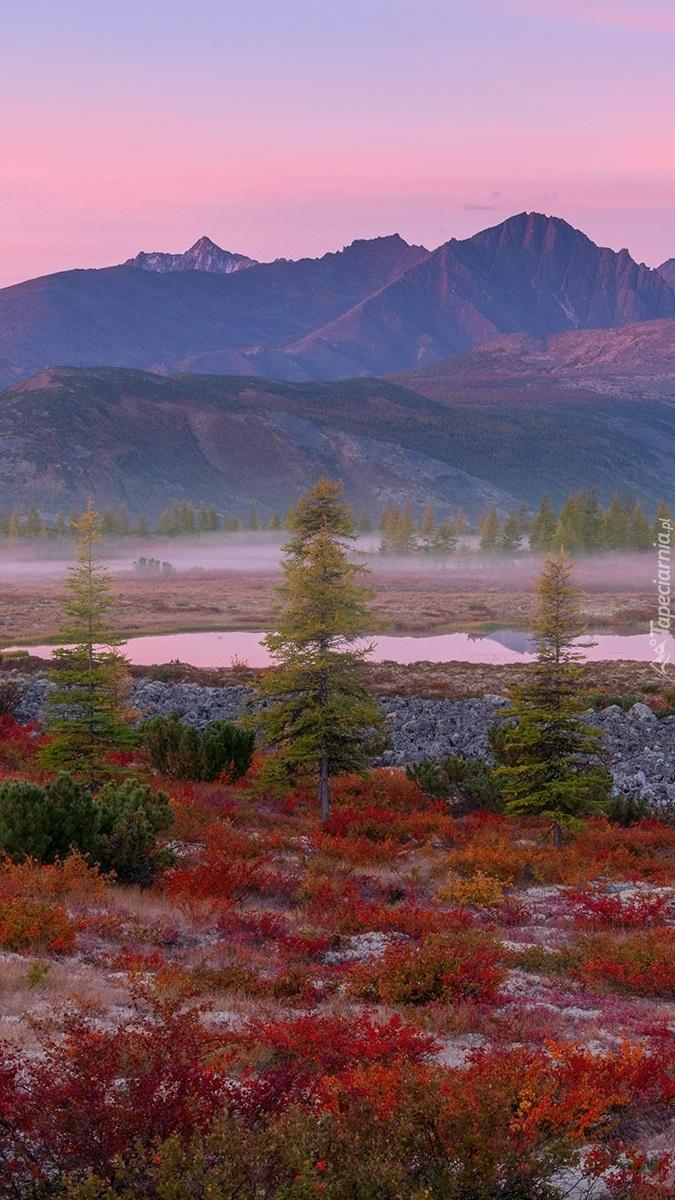 Jesienny krajobraz na Kołymie