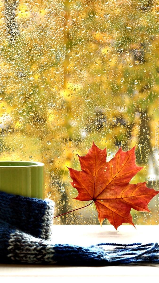 Jesienny liść na mokrej szybie