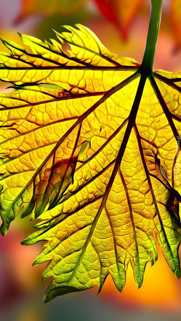 Jesienny liść w grafice
