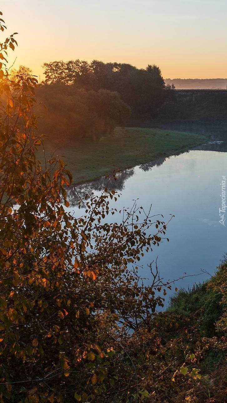 Jesienny poranek nad rzeką