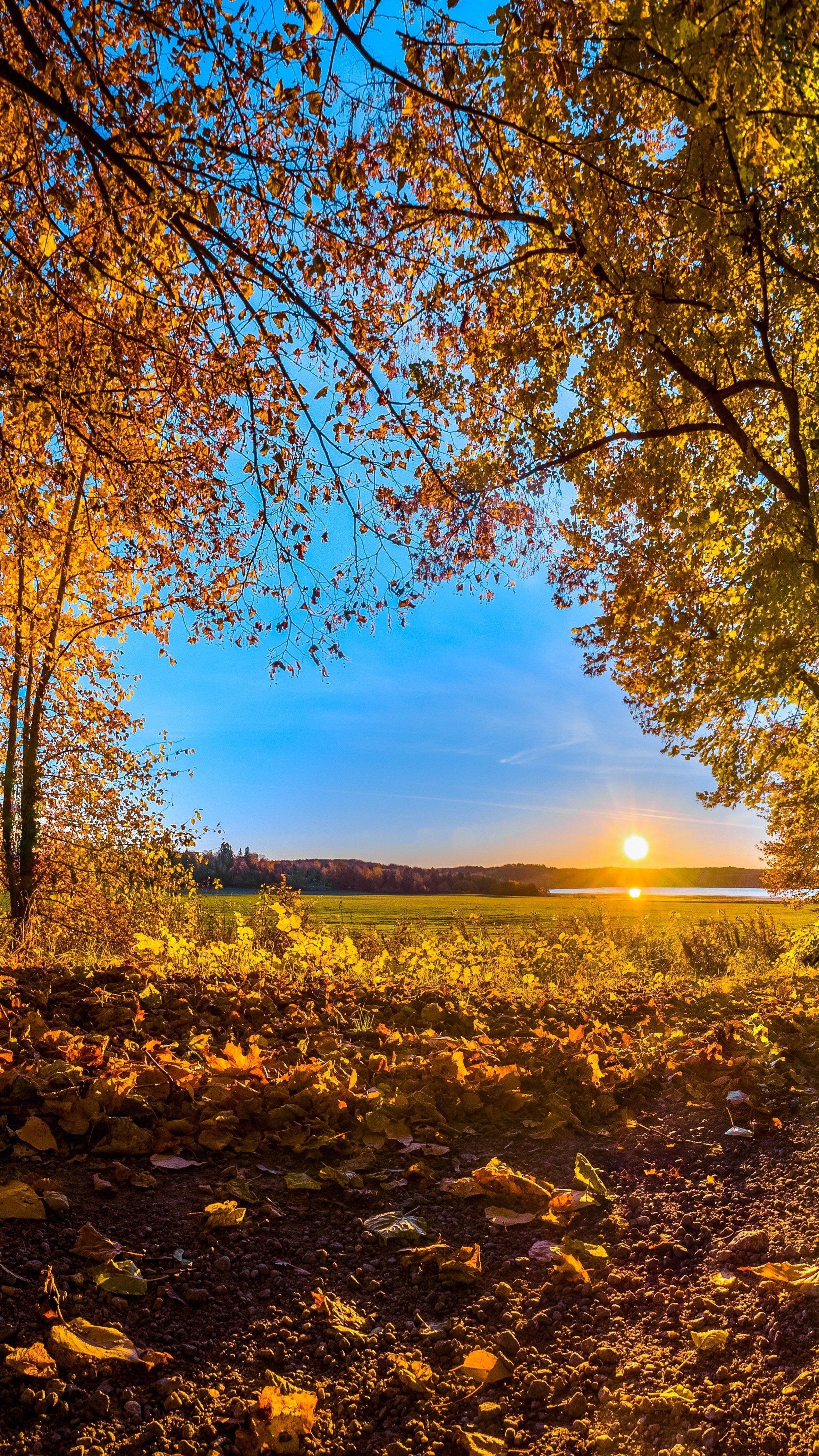Jesienny zachód słońca