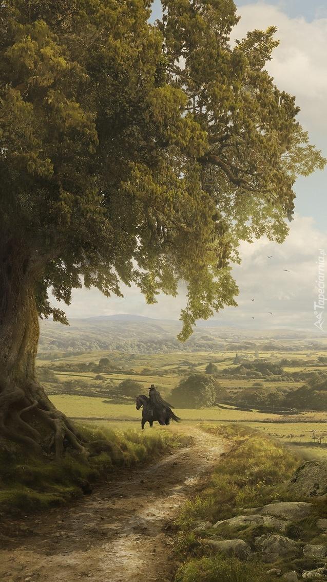 Jeździec na koniu pod drzewem