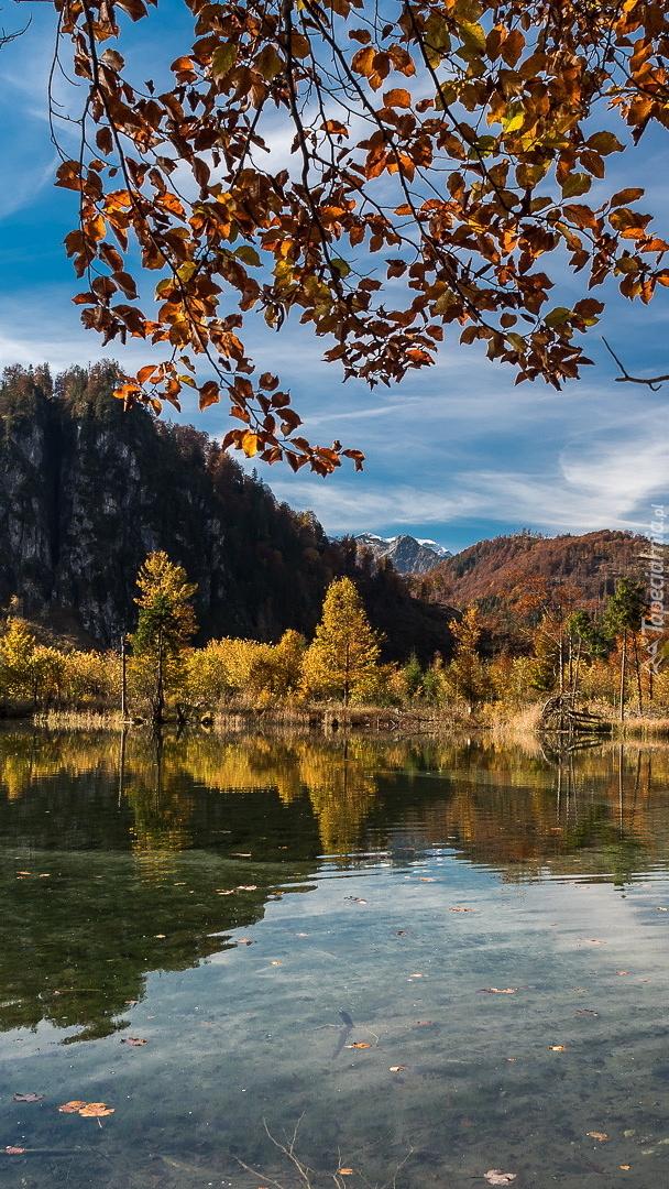 Jezioro Almsee