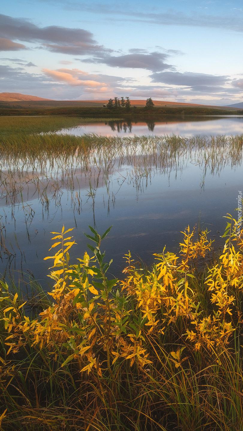 Jezioro Domashnoye w Rosji