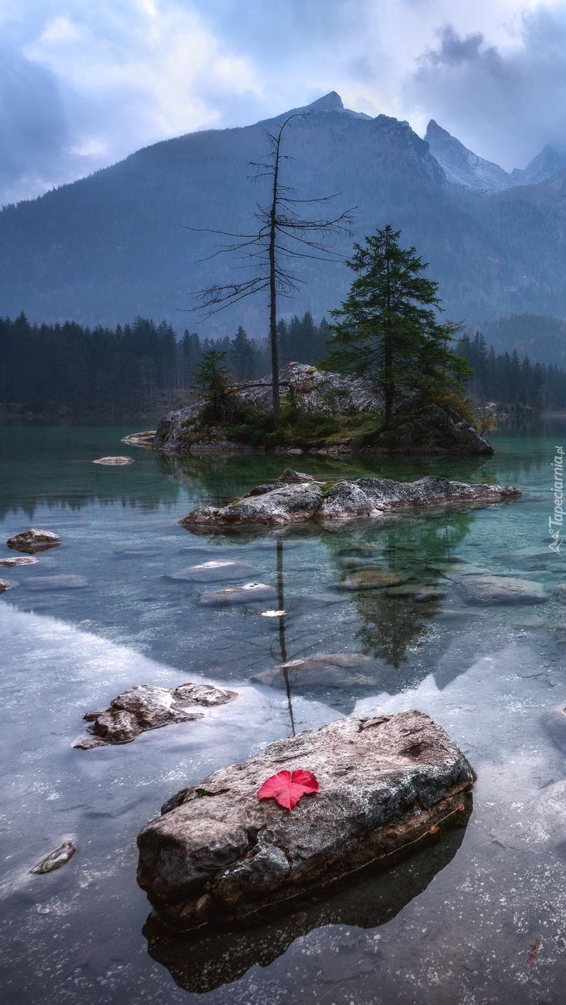 Jezioro Hintersee w leśnych górach