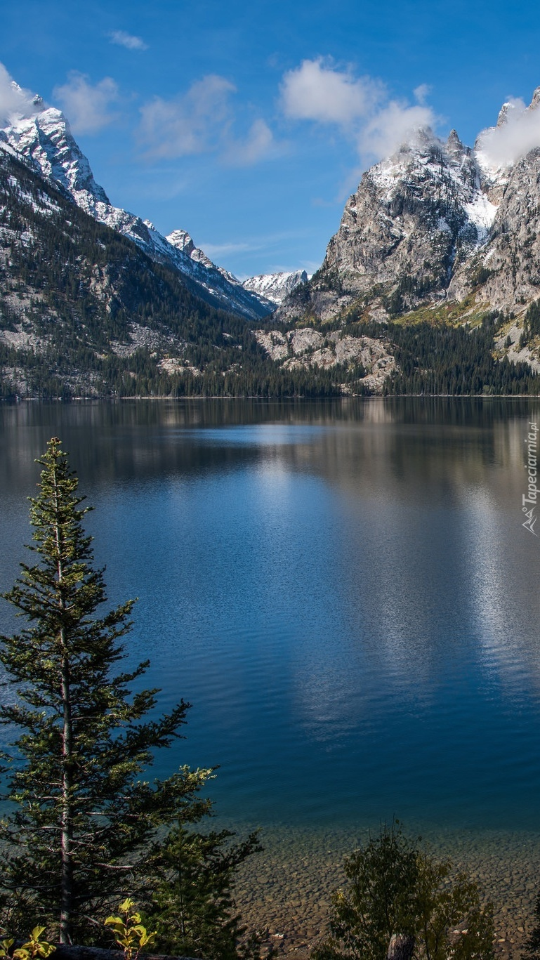 Jezioro Jenny Lake w górach