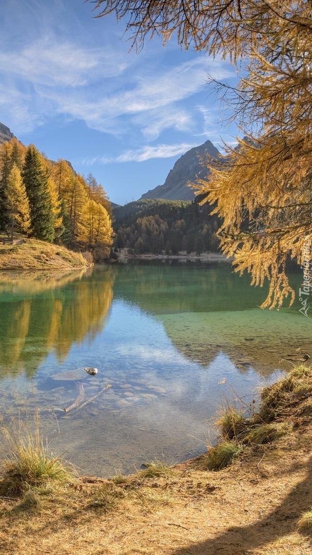 Jezioro Lai da Palpuogna w jesiennych Alpach