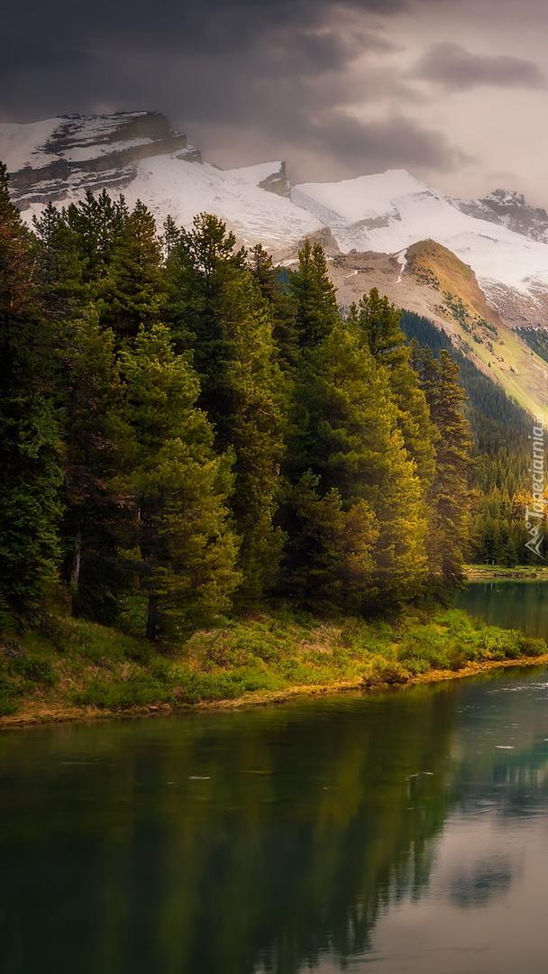 Jezioro Maligne na tle lasu i ośnieżonych gór