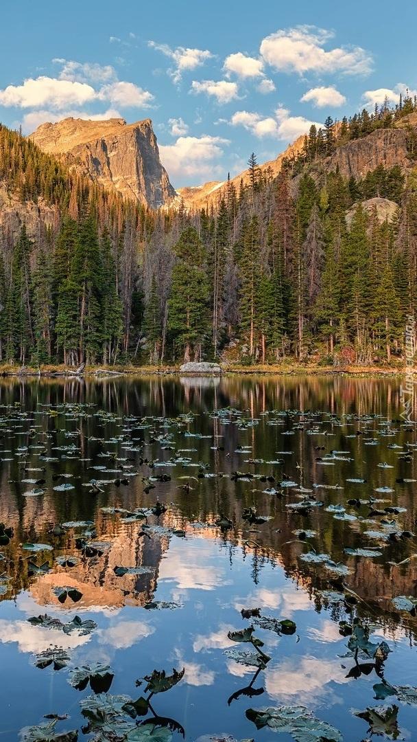 Jezioro Nymph Lake i Góry Skaliste