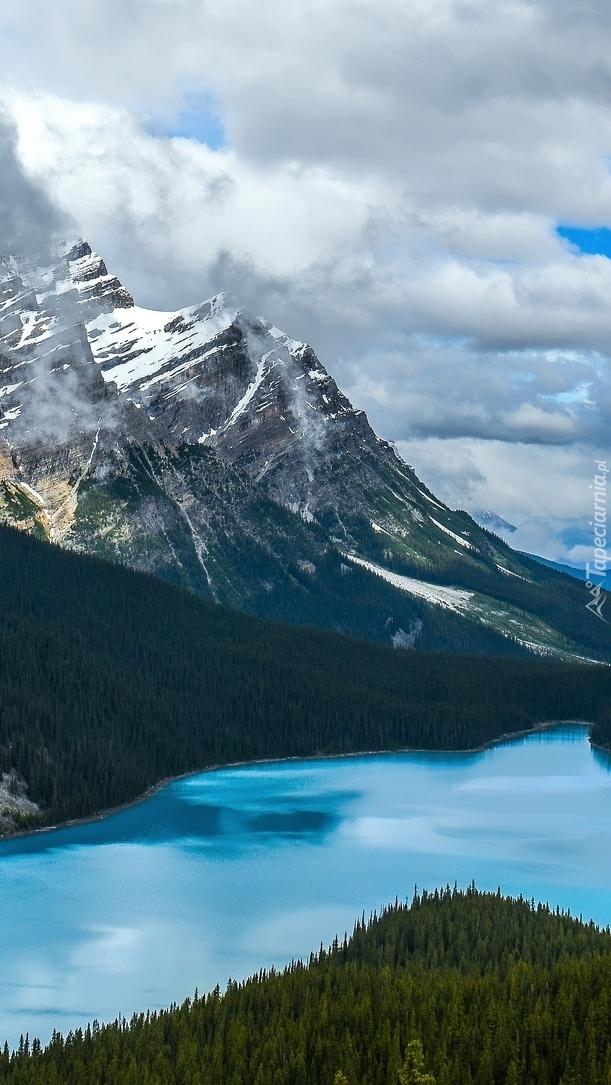 Jezioro Peyto Lake w górach