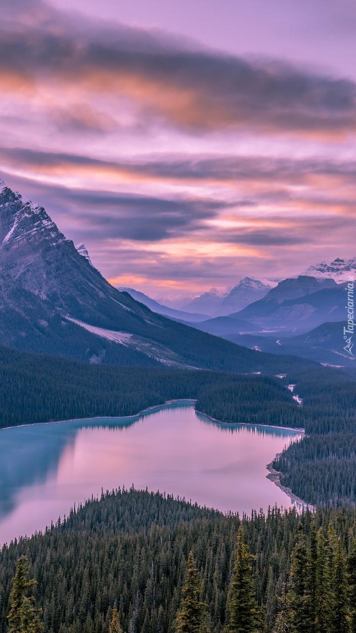 Jezioro Peyto Lake w Parku Narodowym Banff w Kanadzie