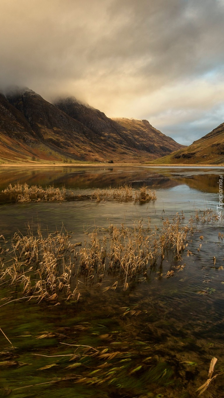 Jezioro porośnięte trawą w zamglonych górach