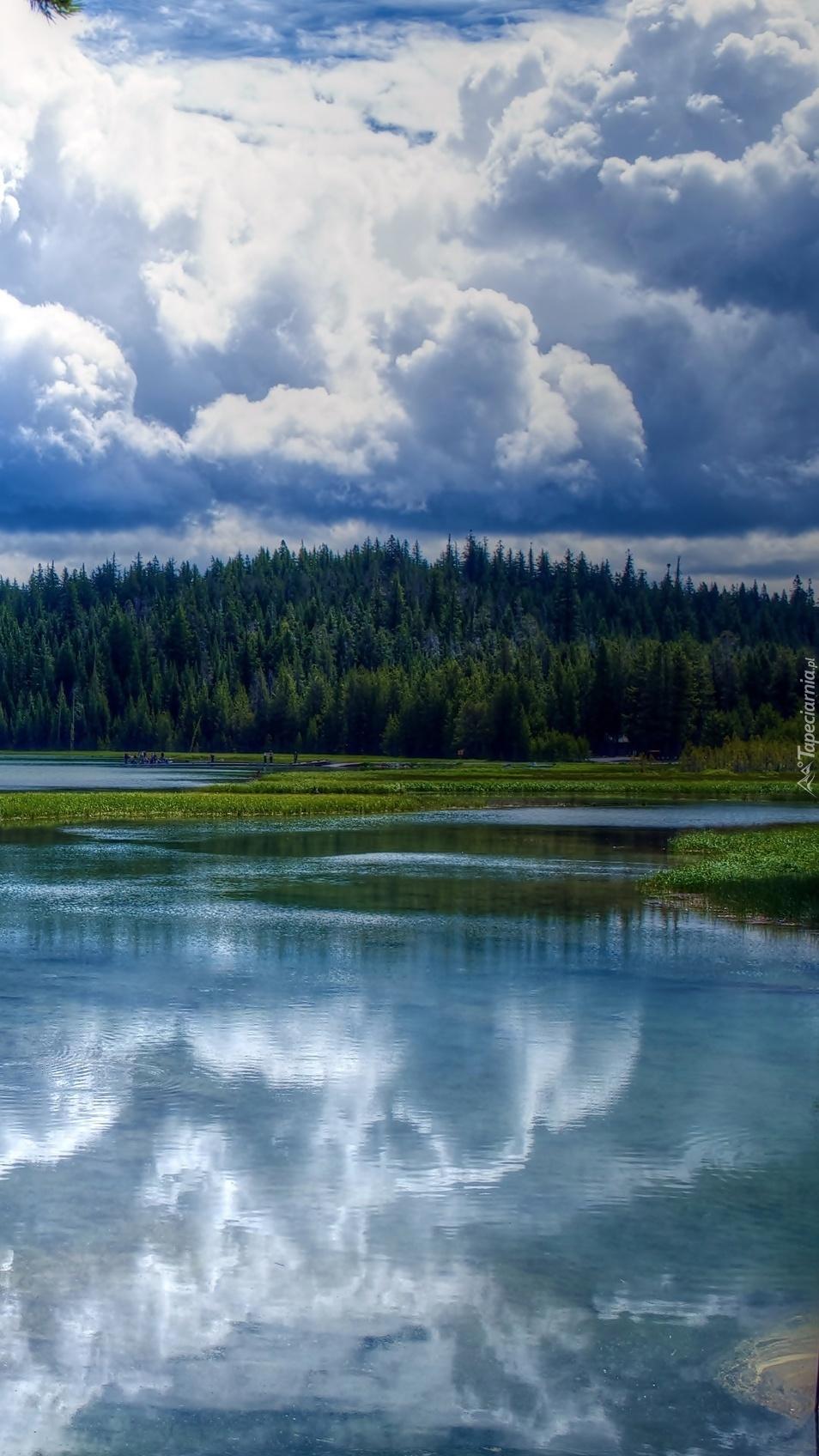 Jezioro przy lesie