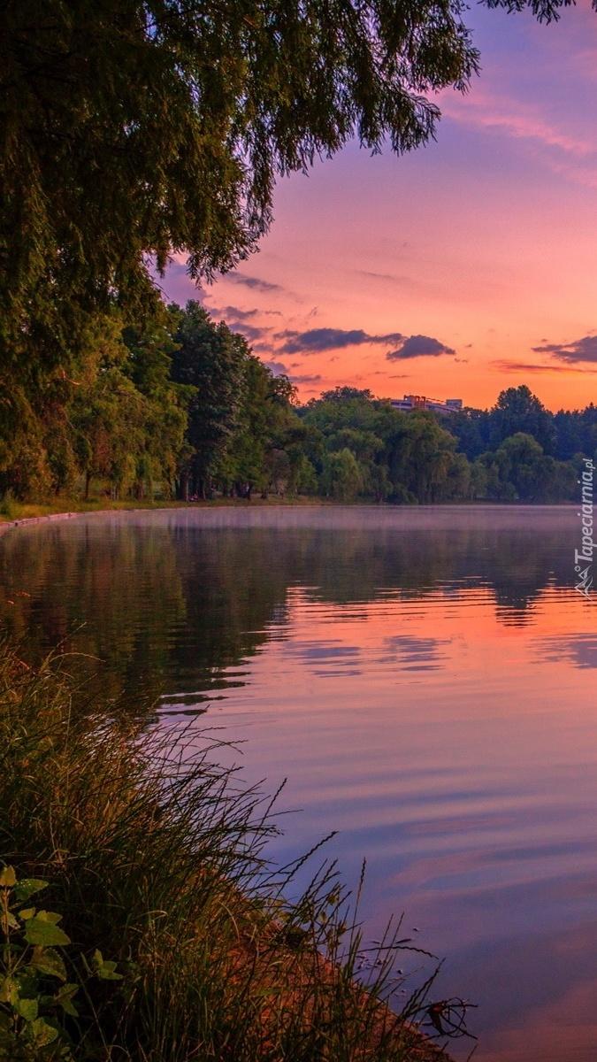 Jezioro w lesie i zachód słońca w chmurach