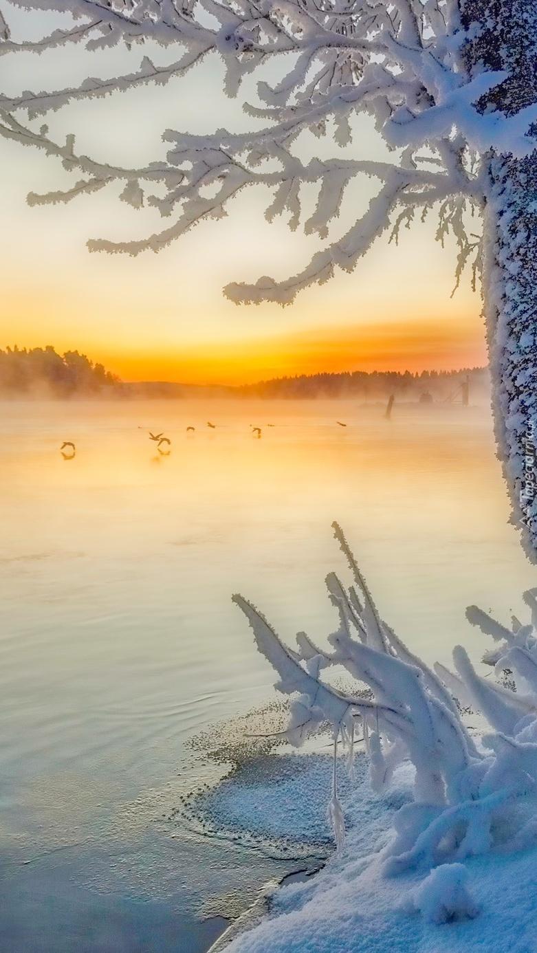 Jezioro zimową porą