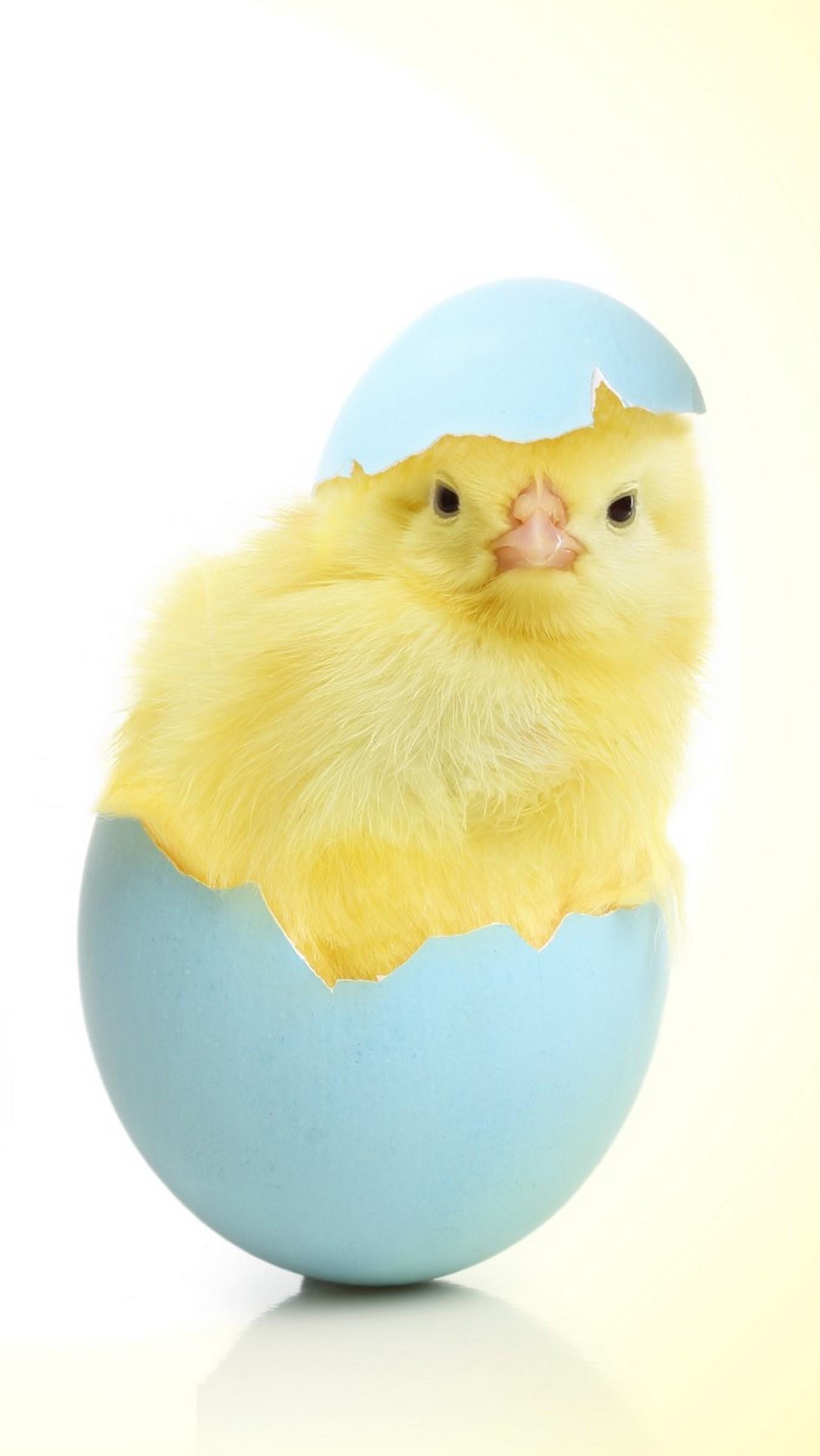 Już nie jestem jajeczko