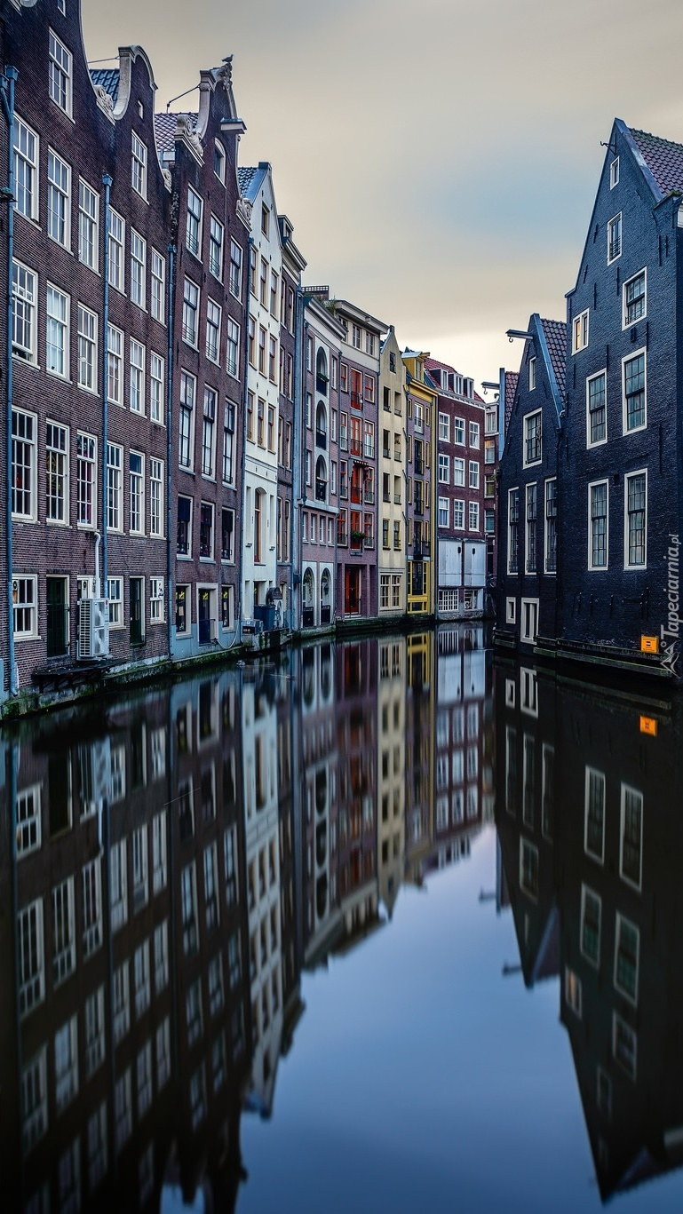Kamienice w Amsterdamie