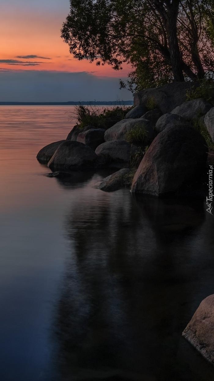 Kamienie i drzewa nad jeziorem