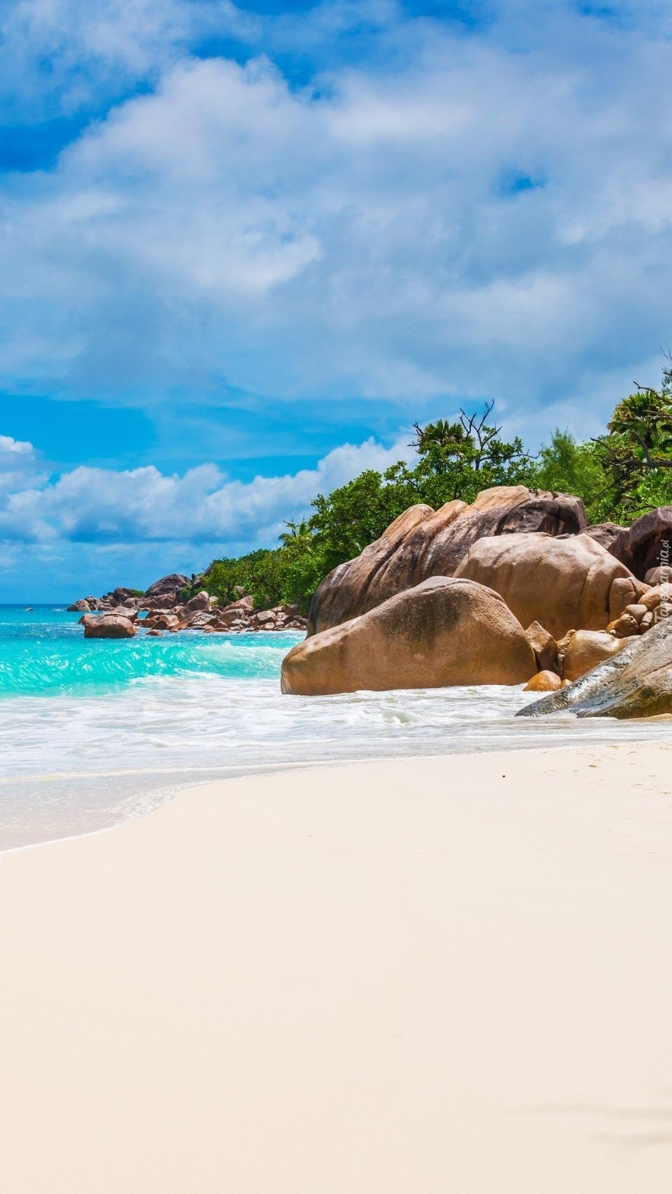 Kamienie na plaży Anse St Jose na Szeszelach