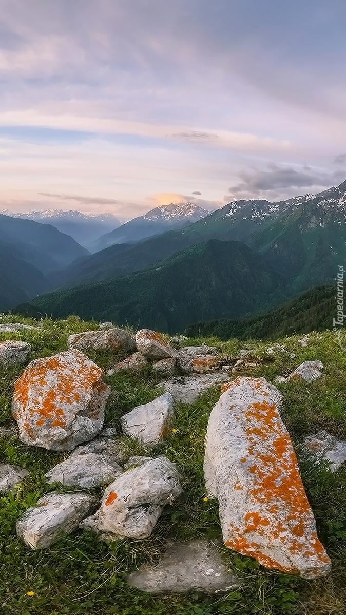 Kamienie na trawie i góry w oddali