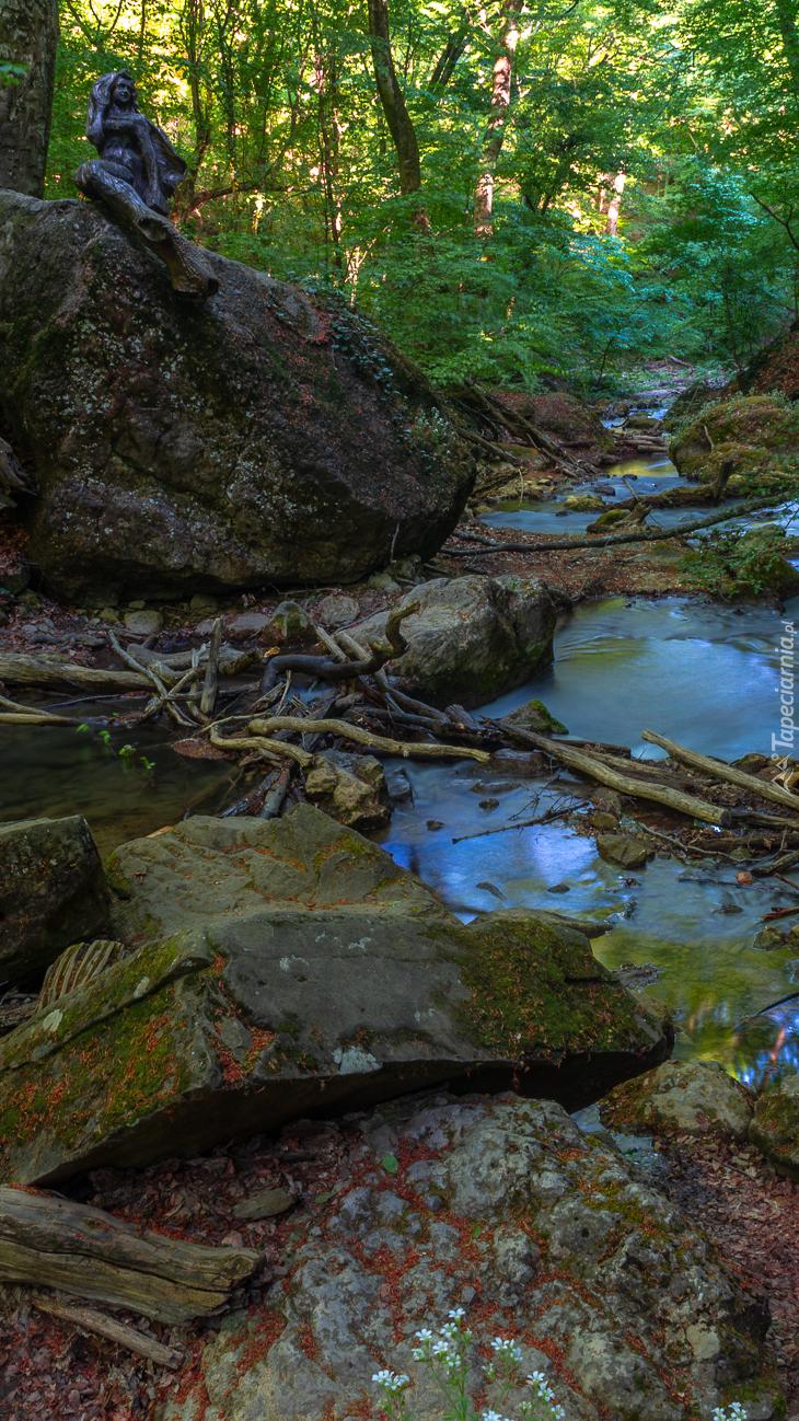 Kamienie nad leśną rzeczką