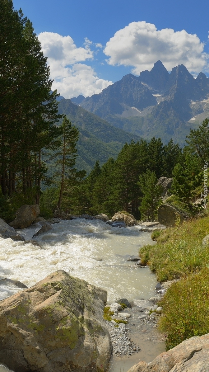 Kamienie w górskiej rzece