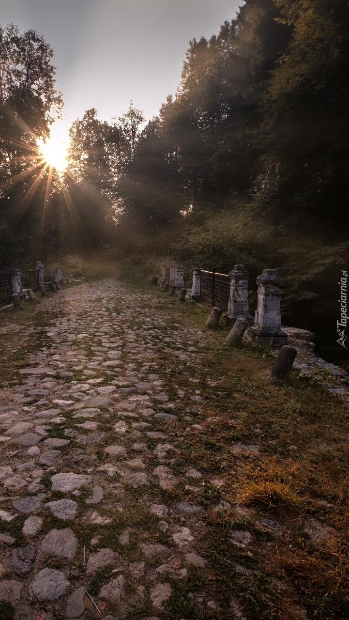 Kamienista droga w promieniach słońca