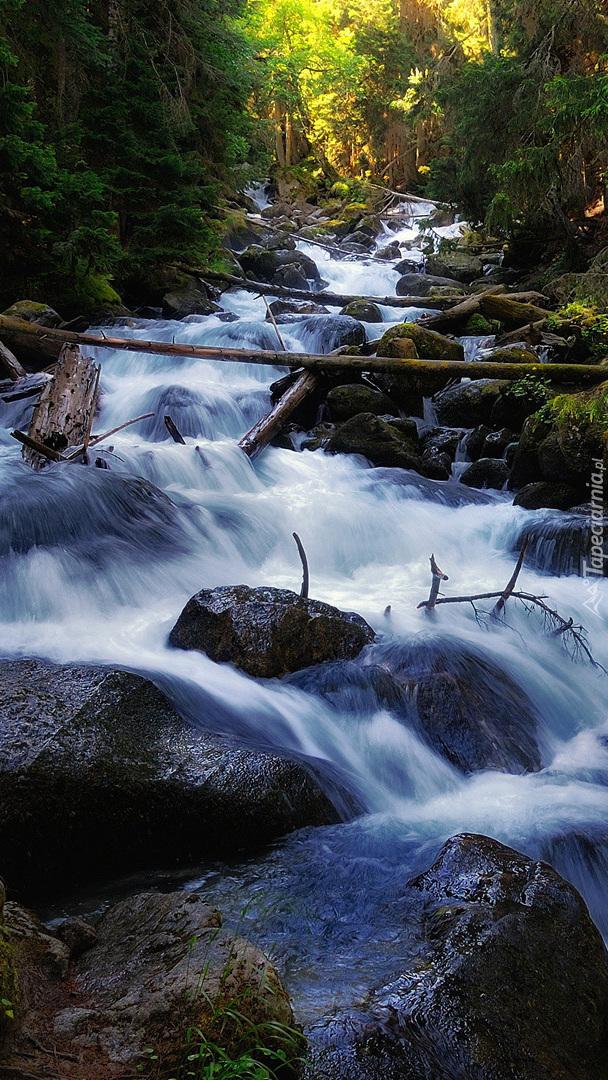 Kamienista rwąca rzeka