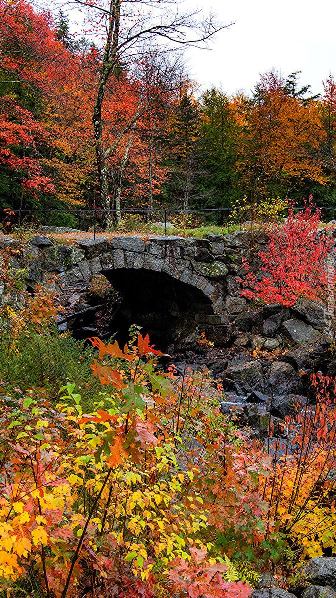 Kamienny most wśród jesiennej roślinności