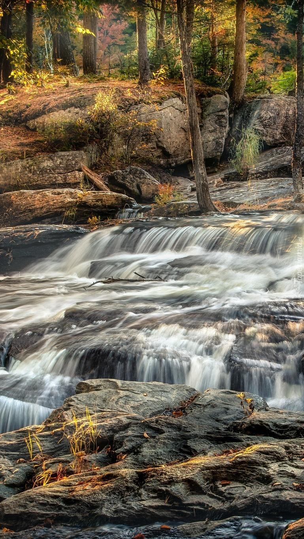 Kaskada na skalistej leśnej rzece
