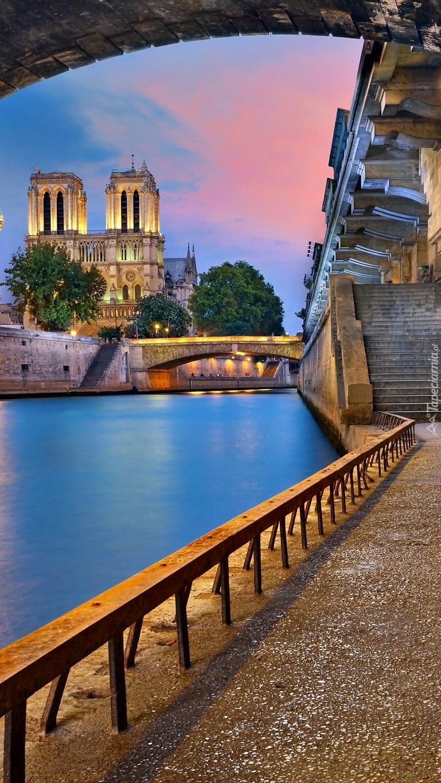 Katedra Notre Dame nad rzeką