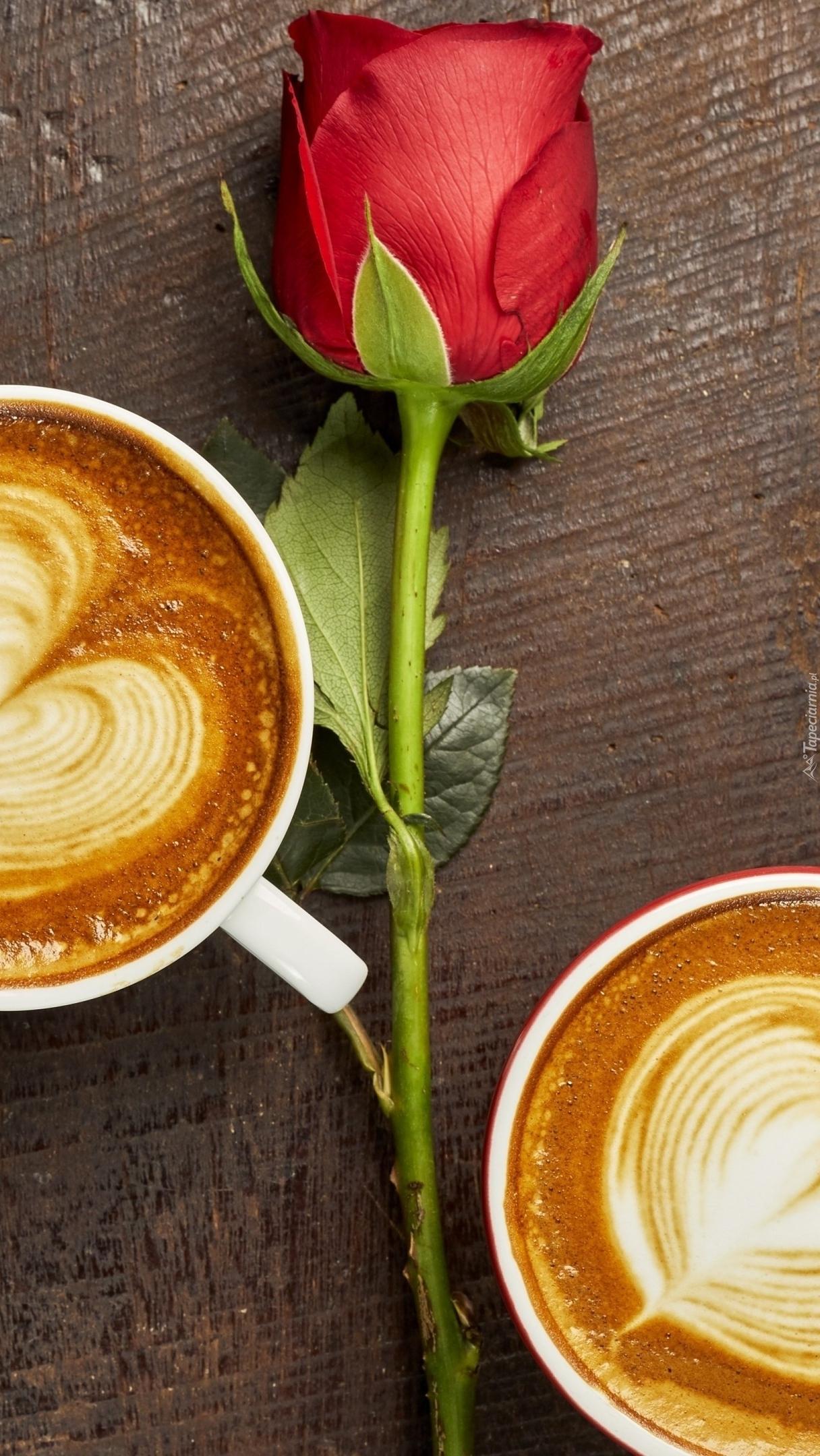 Kawy obok czerwonej róży