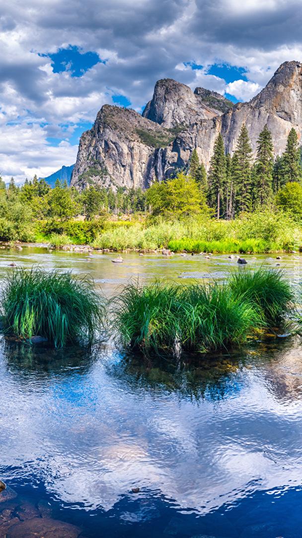 Kępki trawy na rzece Merced River