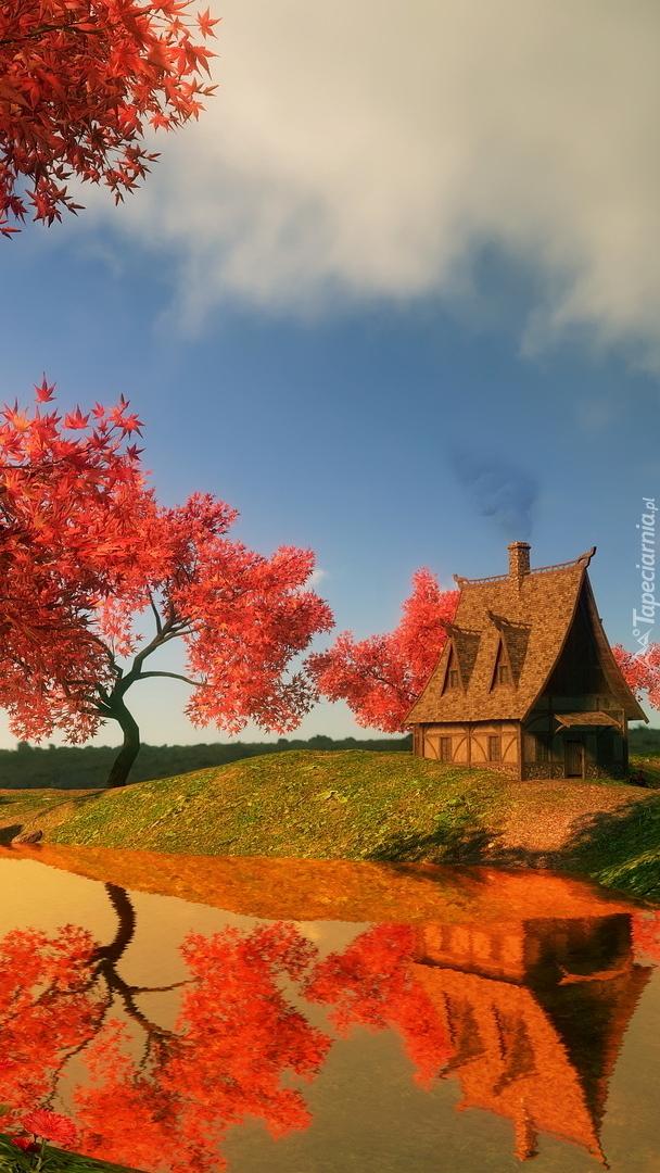 Klon japoński obok domu nad stawem w 2D