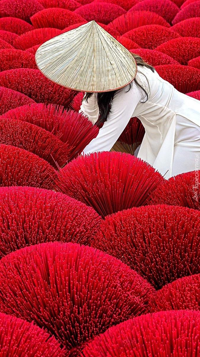 Kobieta na polu czerwonych roślin