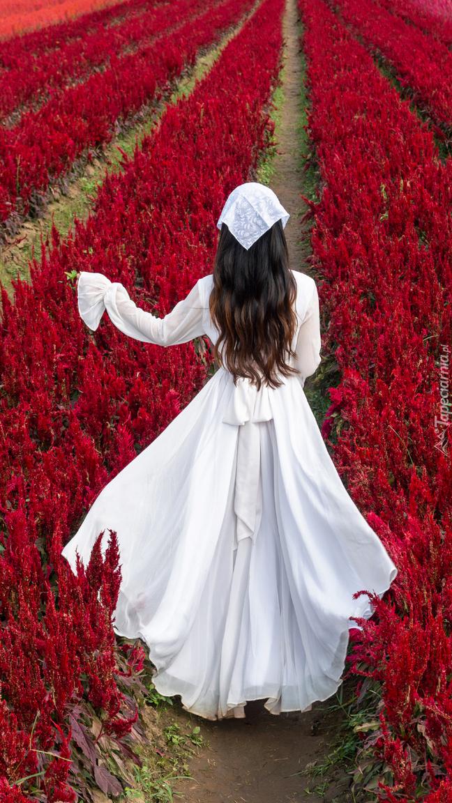 Kobieta w białej sukience na polu czerwonej celozji